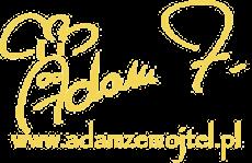 logo_bez_tla_wieksze